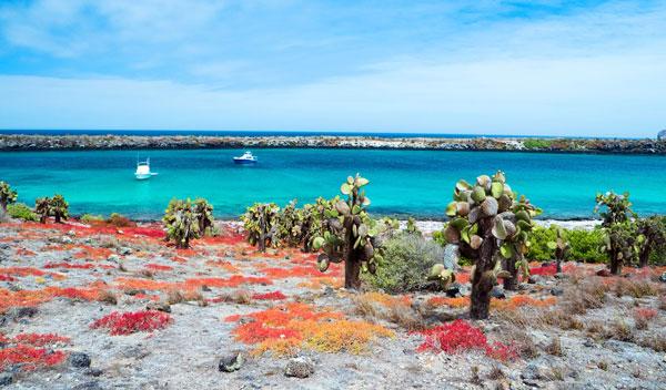 שמורת טבע באיי גלאפגוס
